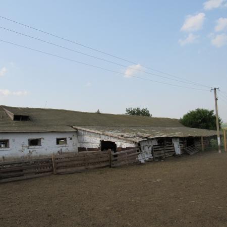 Фермерское хозяйство. Одесская обл., Тарутинский район