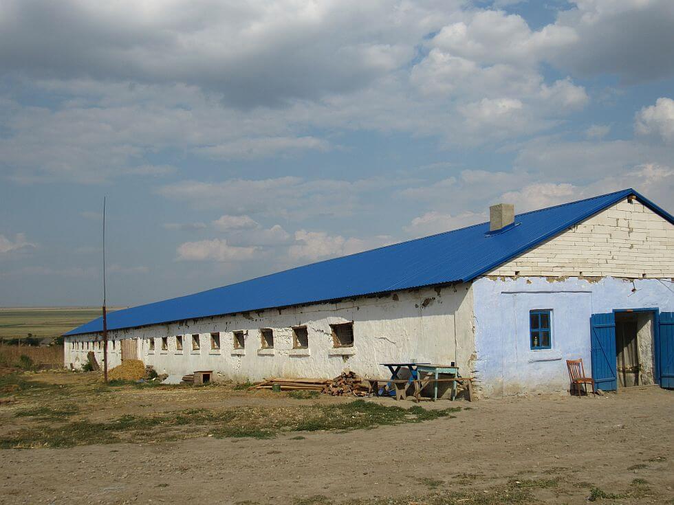 kryisha-iz-profnastila980