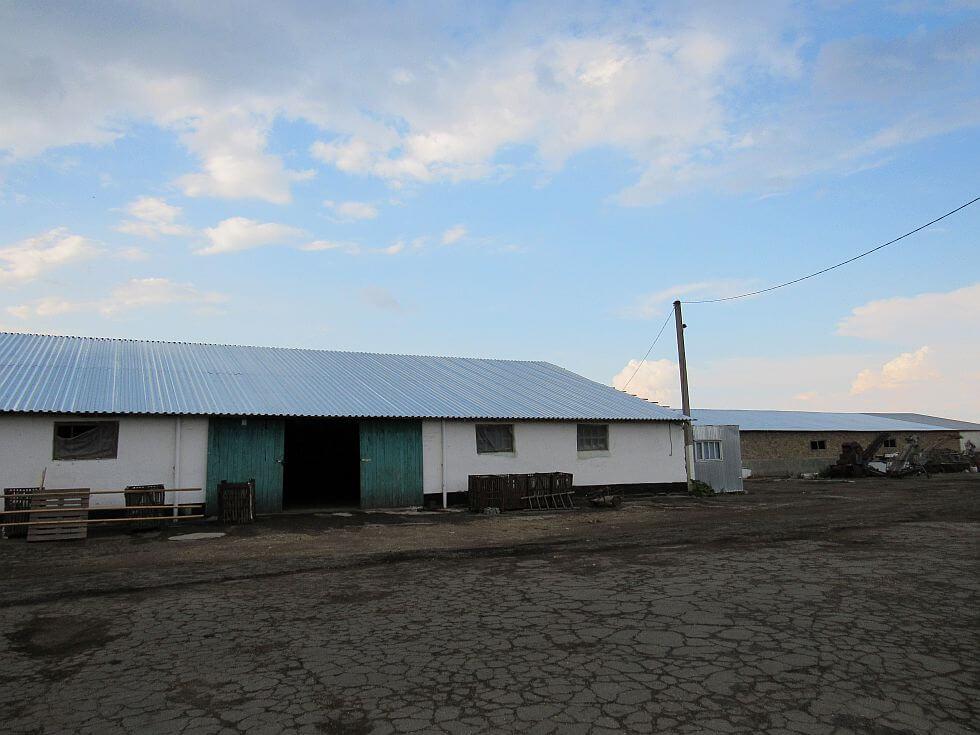 Крыша из пpофнастила